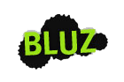 BLUZ_ren